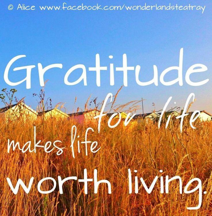 Gratitude quote via Alice in Wonderland's Teatry at www.Facebook.com/WonderlandsTeatry