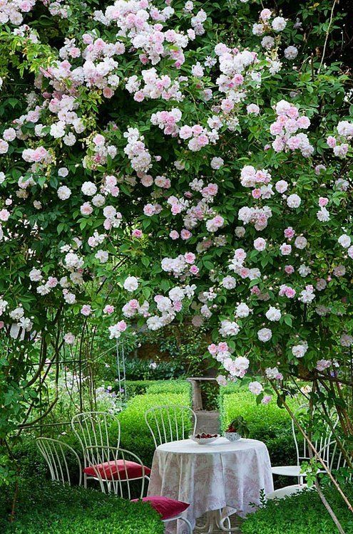 Rose garden romantic sets rose gardens secret gardens for Rose garden design