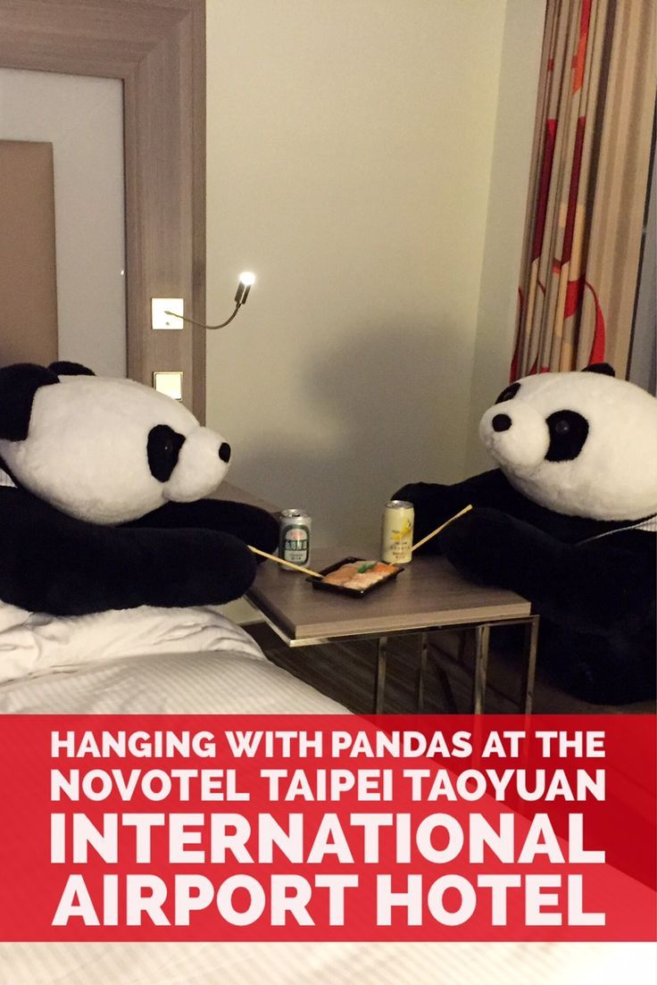 Hanging with Pandas at the Novotel Taipei Taoyuan International Airport Hotel - #Traveltips #travel #trip #vacation #Taiwan #hotels #hotelreviews
