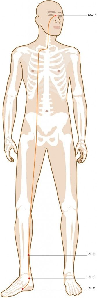 Yin Motility Vessel Acupuncture Points