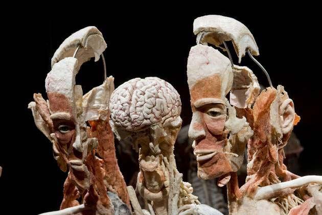 Музей-мумий