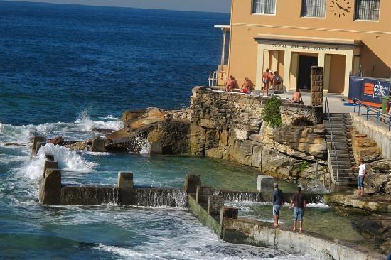 Coogee Beach #Sydney  #Australia ...    http://www.tripadvisor.com.au/ShowForum-g255060-i122-Sydney_New_South_Wales.html