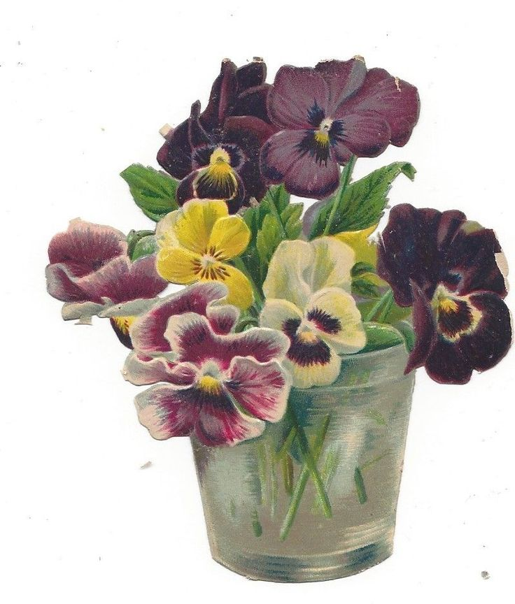 Victorian Die Cut Scrap A Glass of Pansies