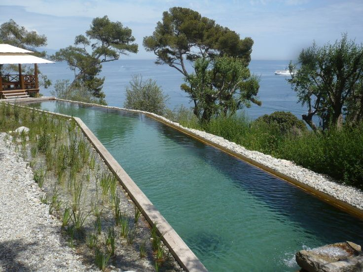31 best piscinas naturales images on pinterest natural for Albercas naturales