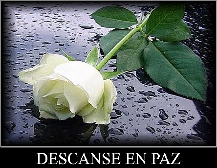 Descansa en paz amigo