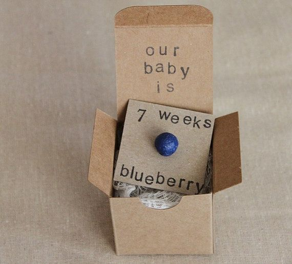 7 week Pregnancy Announcements How Big Is My Baby by ThePartyPosse