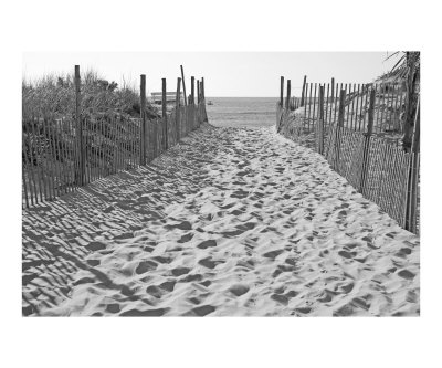 footprints in the sand: Sandy Beach, Beaches Pictures I Love, Favorite Places, Beach Traffic, Cities Places I Ve, Black And White, Beach Pathway, The Beach