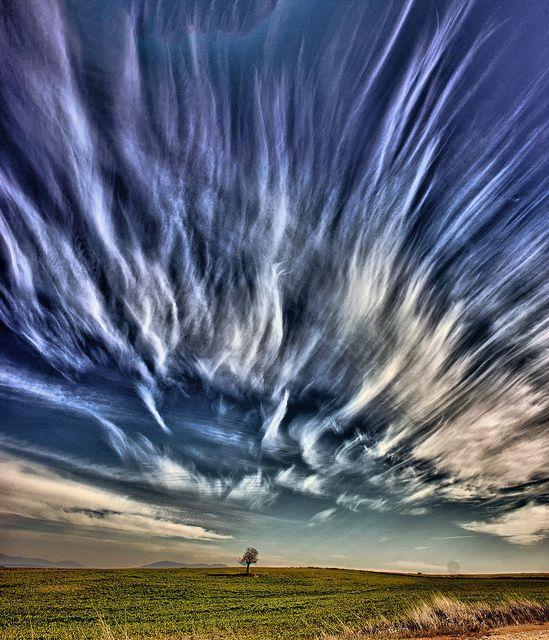 Wild cirrus sky