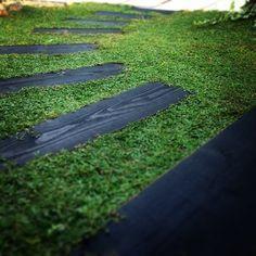 イワダレソウ    今芝生にかわるグラウンドカバーとして、注目を集めているイワダレソウ。 春から夏にかけて、小さい小花を咲かせ、芝生ほど手入れも必要ではないということで人気があります。      枕木周りにしいたイワダレソウ。 枕木ともとっても相性がいいですね。  出典: instagram.com(@yucaaarink)   枕木周りにしいたイワダレソウ。 枕木ともとっても相性がいいですね。