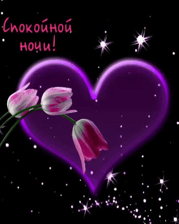 Днем, нежные открытки о любви спокойной ночи