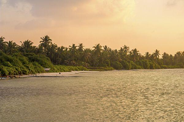 ¿Quieres conocer la vida local de Maldivas? Kaashidhoo es tu destino.  Es una de las islas más grandes y está ubicada en su propio atolón, el atolón Kaafu. Aquí vas a poder tener una mayor experiencia local, pudiendo visitar talleres de artesanía e incluso un pequeño manglar.  ¡Maldivas te espera!  #NomadsMaldives #Wanderlust #Kaashidhoo #KaafuAtoll