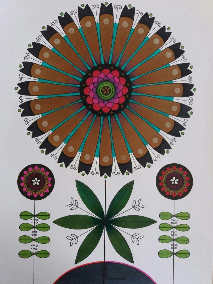 Flowers in ink and colour pencils. Blommor tecknade i tusch och färoennor. A4