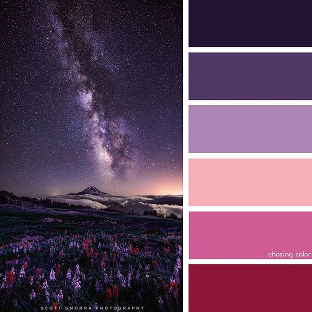Purple Color Combinations, Red