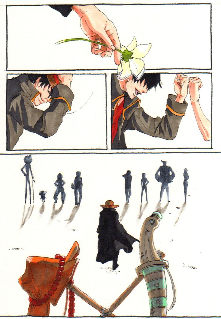 T~T Luffy, the Mugiwaras (Straw Hat crew), Ace, and Sabo, One Piece