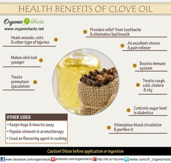 isolation of clove oil from cloves The supercritical fluid extraction (sfe) of clove bud essential oil was studied  using co2 as sol- vent  istic note to cloves fragrance) from clove buds the.