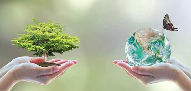 مشروع اثراء المعرض السنوي للمتوسطة بركن حول البيئة Http Www Seyf Educ Com 2020 07 Enriching The Annual Medi Junk Removal Service Junk Removal Christmas Bulbs
