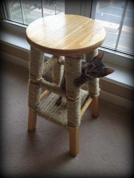 Met een oud krukje en wat touw een fijne krabpaal maken voor je kat.