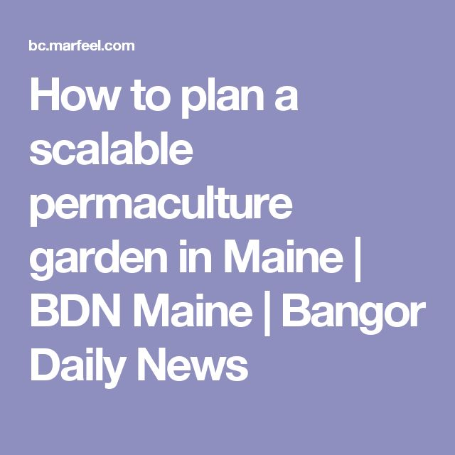 How to plan a scalable permaculture garden in Maine | BDN Maine | Bangor Daily News