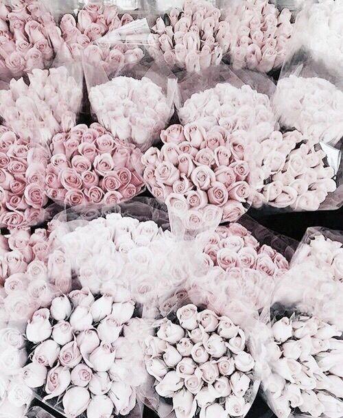 kisses xx, ♡princessmeghanm♡