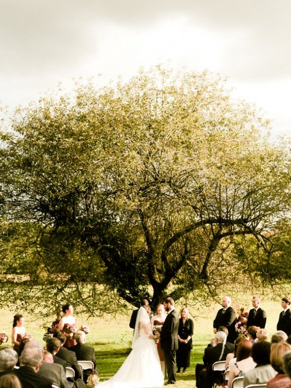 New Jersey Barn Wedding Trees Wedding Venues And
