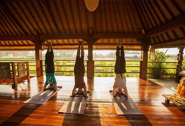 Empowered Arts Yoga Retreat – Bali, Indonesia | 31 Jan – 6 Feb, 2016 7 days https://glomad.com/experience/1470  #yogaretreat #yoga #bali #2016