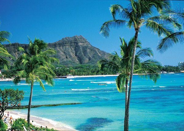 Hawaii mare. Luna di miele