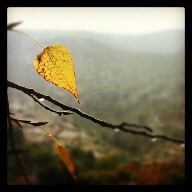 Otoño en La Vall de Gallinera