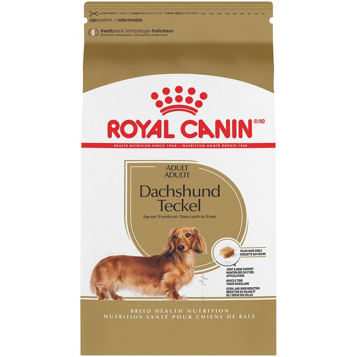 Royal Canin Breed Health Nutrition Dachshund Teckel Adult Dry Dog
