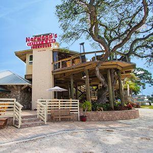 Norwood's, Restaurant, Wine Shop, Eatery, Bar, Treehouse, New Smyrna Beach, Florida, Seafood, full bar, happy hour, wine festival, wine walk, liquor tasting,