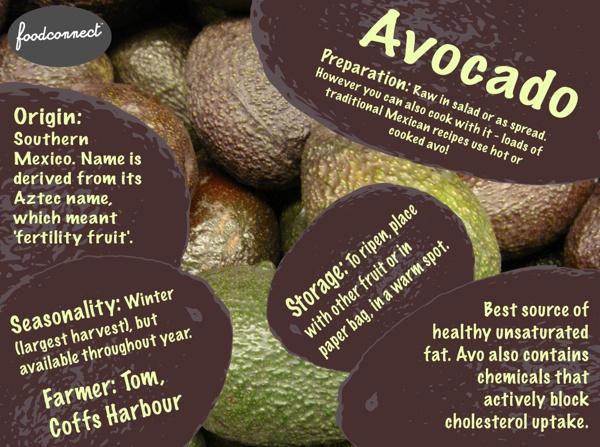 Avocado — Facts