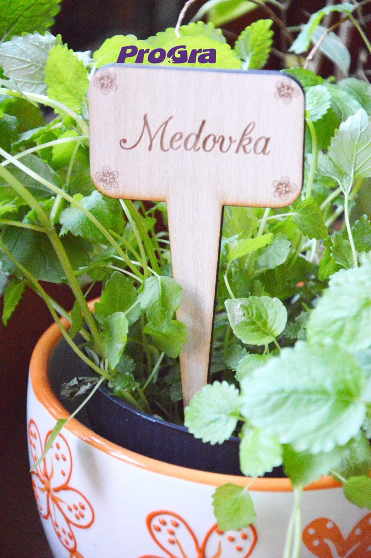http://www.progra.sk/products/zapich-do-bylinkovej-zahradky-na-okne-typ1/