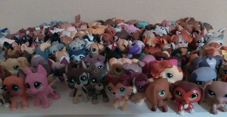 Excellent condition littlest pet shop lot of 3 pets and 3 accessories randomly wrapped in surprise gift bag. Smoke free and gently used . All pets are clean and in Excellent Condition very well taken cared of. I ship within 24 hours of cleared payment usually same day except Sunday. Please leave feedback!! | eBay!