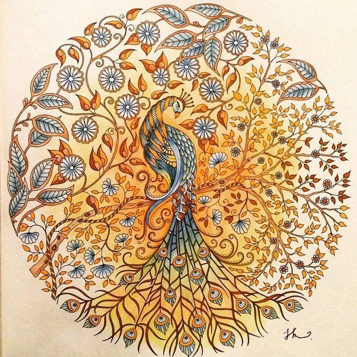 25 trending secret garden coloring book ideas on - Secret Garden Coloring Pages