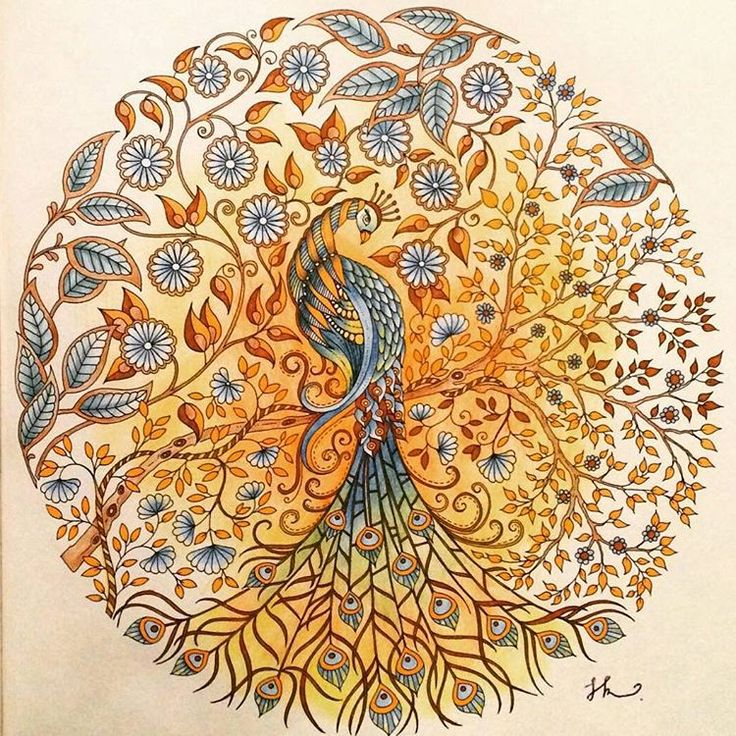 Best 25 Secret Garden Coloring Book Ideas That You Will