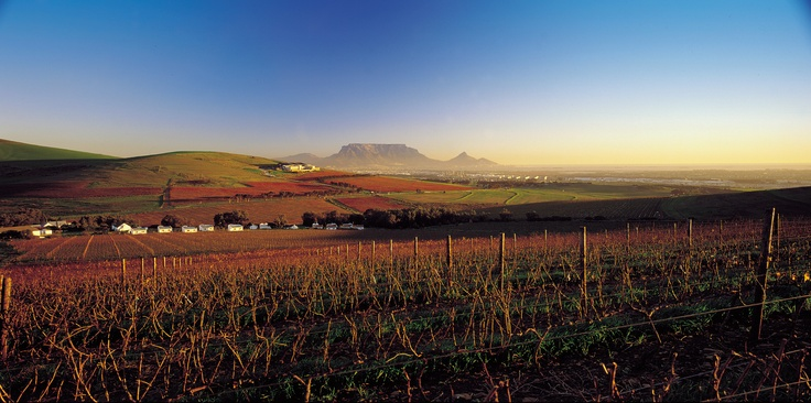 Views from #Durbanville