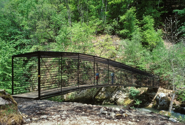 Footbridge Crossing L'Areuse Neuchâtel, Switzerland A project by: Geninasca Delefortrie Architectes