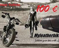 Notre collection de sacoches latérales de cadre en cuir pour Harley Davidson Sportster 1200 Forty Eight