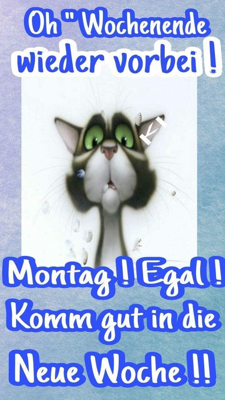 Montag Vorbei Sprüche Bilder Und Sprüche Für Whatsapp Und Facebook