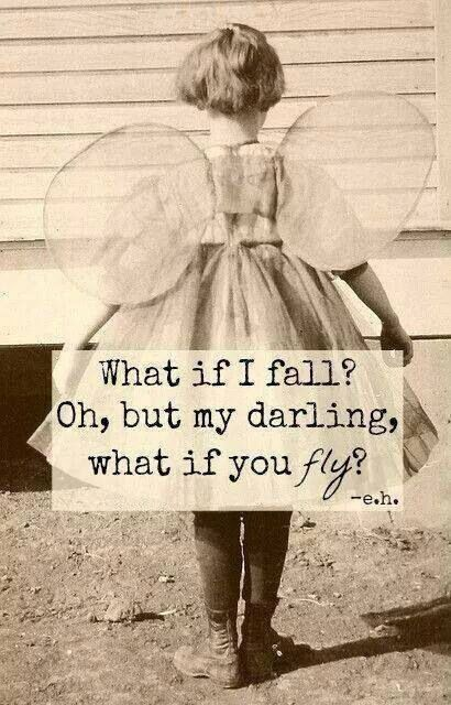 Fall Or Fly Inspirational Quote Inspirational Quotes