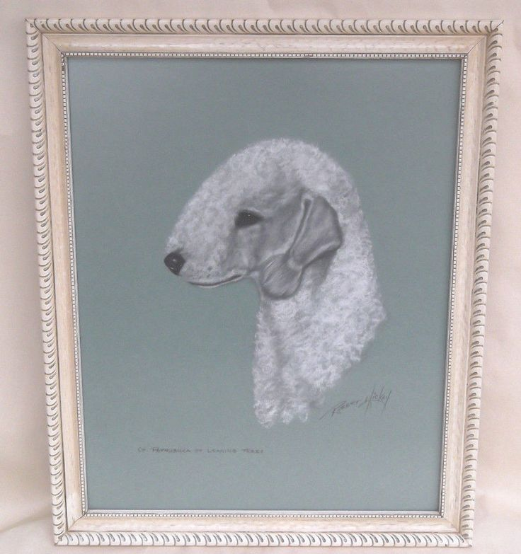 ROBERT C. HICKEY Pastel Bedlington Terrier Petrushka Of Leaning Trees Portrait #Contemporary