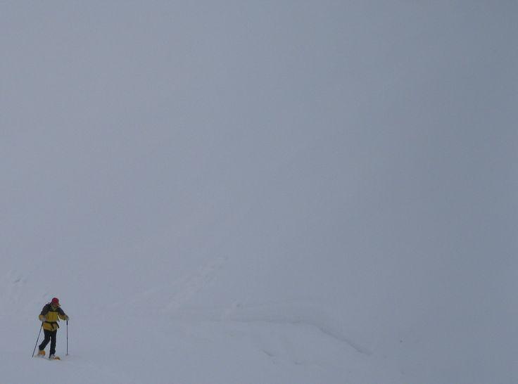 Sopralluogo in alta quota (Foto di M.Canziani) lungo uno dei passaggi più frequentati dagli orsi nel settore meridionale del Parco dell'Adamello - Progetto Stepping Stones Adamello/Programma Alpino Uomo e Grandi Carnivori (www.uomoeterritoriopronatura.it)