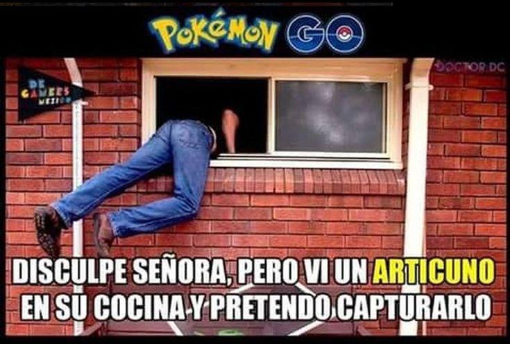memes | Los Memes de Pokemon Go – Los mejores memes en español