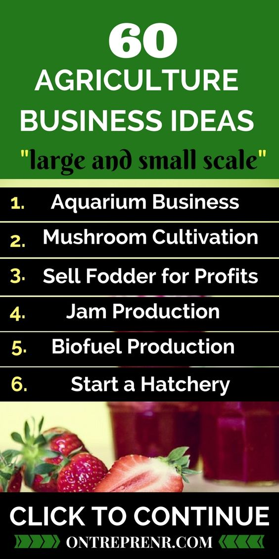 Agriculture is the new money! There is no loss with an agriculture business because nothing is a waste. Click to get the best agriculture business ideas with little investment today.