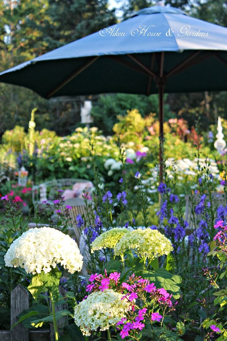 17 best images about flower garden pictures on pinterest
