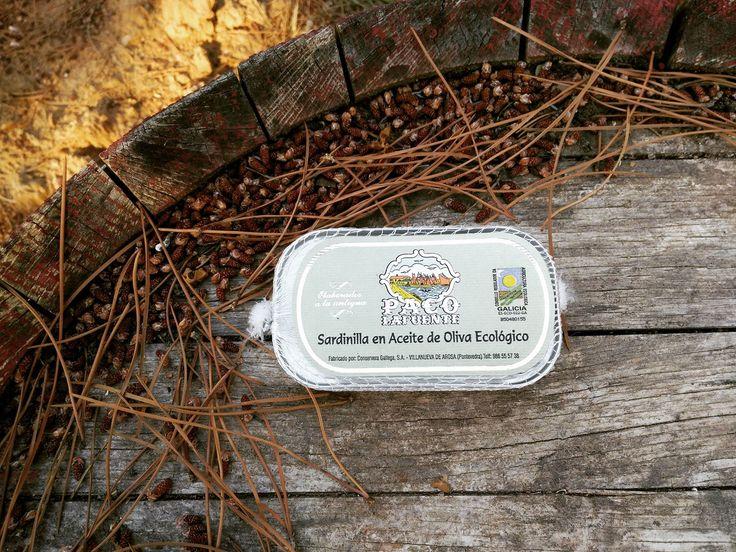 Sardinillas (Sardinas) en aceite de oliva ecológico que la casa Paco Lafuente nos ofrece como manjar representativo del arte conservero gallego. Todo un lujo para los que saben apreciar la calidad de la mejor materia prima.
