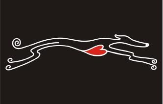 Running Greyhound Image