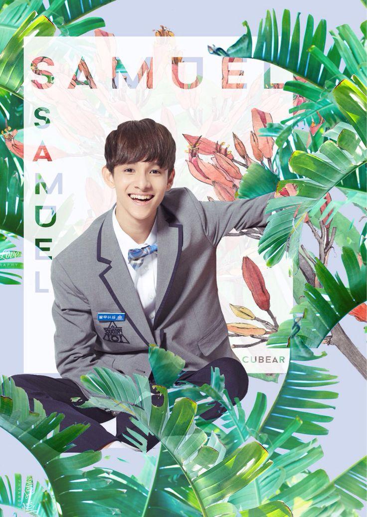 Samuel kim , punch