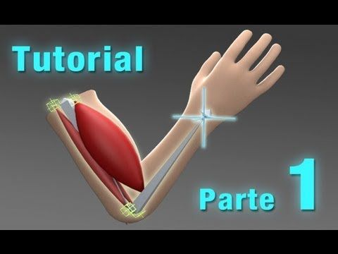 Tutorial arm muscle / Di O Matic / 3DS MAX / Parte 1 - YouTube