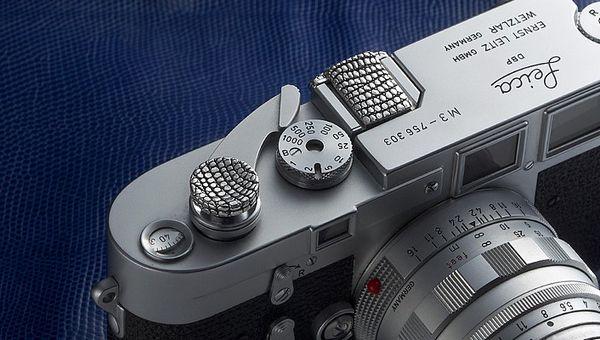 premium lizard Leica