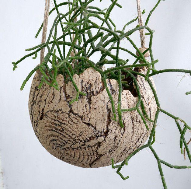 Bluhende Hangepflanzen Blumenampeln Ampelpflanzen Ideen